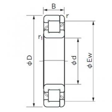 30 mm x 62 mm x 16 mm  NACHI NP 206 cylindrical roller bearings