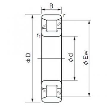 180 mm x 320 mm x 52 mm  NACHI N 236 cylindrical roller bearings