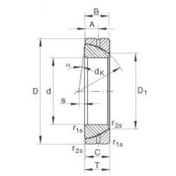 INA GE25-SX plain bearings
