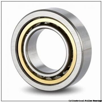 30 mm x 55 mm x 13 mm  NSK NU1006 cylindrical roller bearings