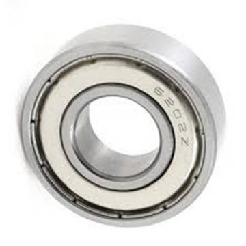 OEM Custom Any Size Chrome Steel Gcr15 Double Row Taper Roller Deep Groove Ball Bearing 6201z 6202z