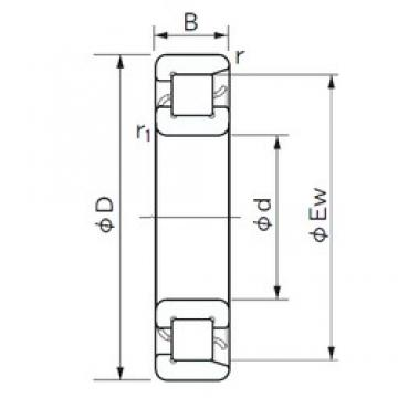 100 mm x 180 mm x 34 mm  NACHI NF 220 cylindrical roller bearings