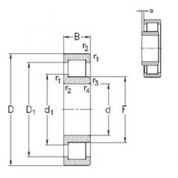 170 mm x 310 mm x 86 mm  NKE NJ2234-E-MPA cylindrical roller bearings