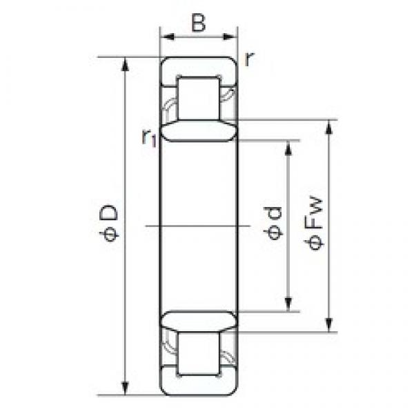160 mm x 290 mm x 80 mm  NACHI NU 2232 cylindrical roller bearings #3 image