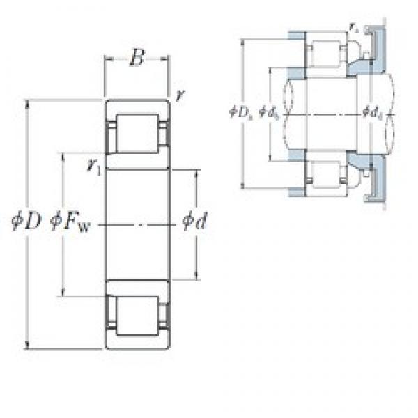 65 mm x 100 mm x 18 mm  NSK NJ1013 cylindrical roller bearings #3 image