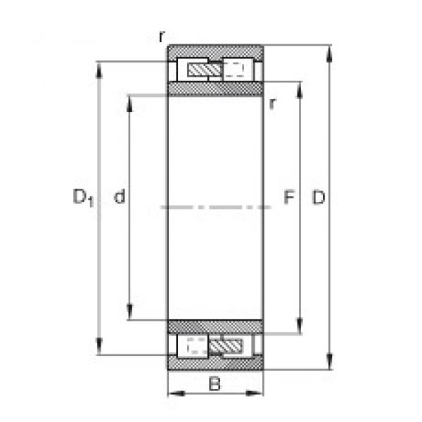 320 mm x 540 mm x 218 mm  FAG NNU4164-M cylindrical roller bearings #3 image