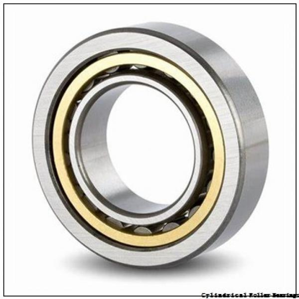 45 mm x 75 mm x 40 mm  IKO NAS 5009ZZNR cylindrical roller bearings #1 image