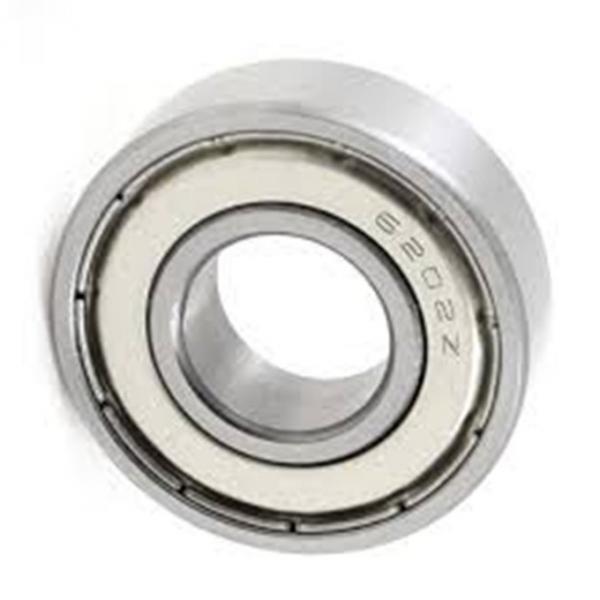 OEM Custom Any Size Chrome Steel Gcr15 Double Row Taper Roller Deep Groove Ball Bearing 6201z 6202z #1 image