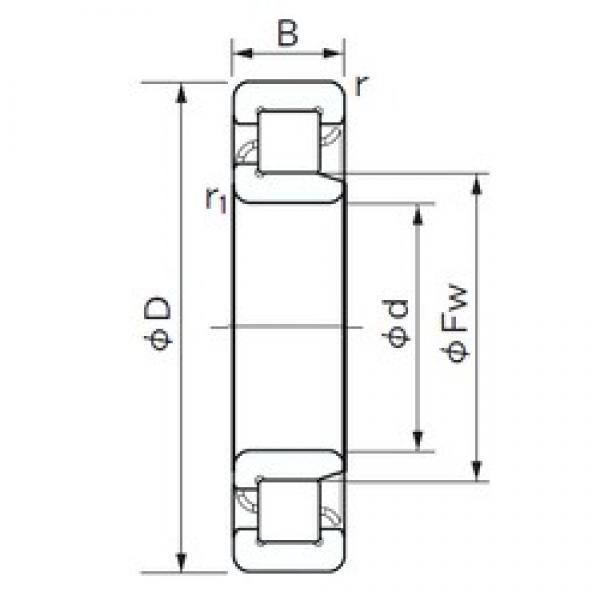 35 mm x 100 mm x 25 mm  NACHI NJ 407 cylindrical roller bearings #3 image