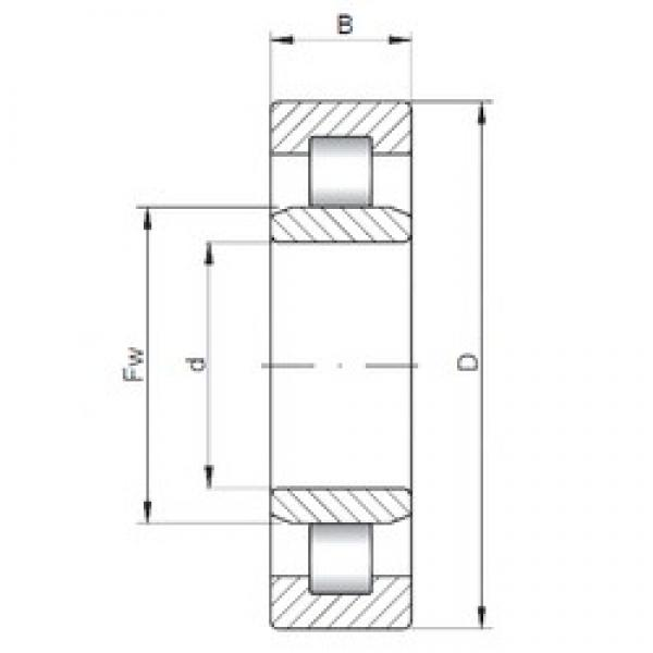 220 mm x 400 mm x 65 mm  ISO NU244 cylindrical roller bearings #3 image